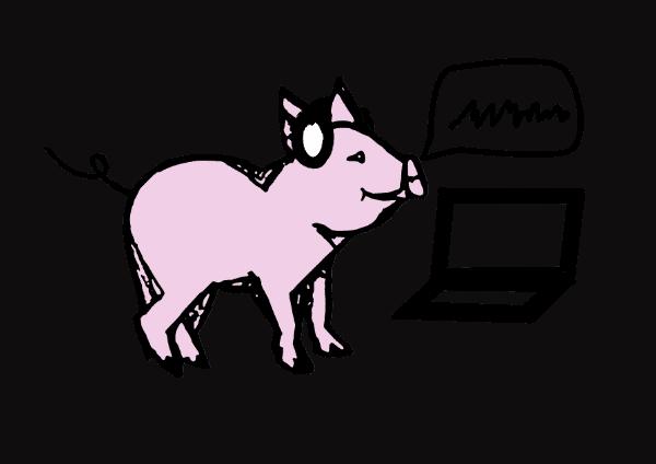 Pig with headphones